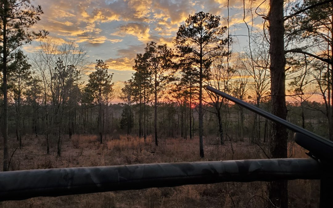 My first predator hunting experience and how it relates to concealed carry